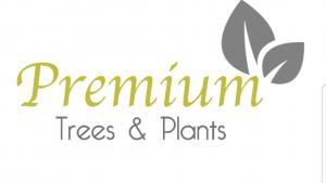 premium plants